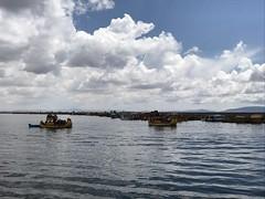 IMG_4563 (massimo palmi) Tags: perù peru titicaca uro uros lagotiticaca laketiticaca floatingislands floating islands isolegalleggianti puno totora