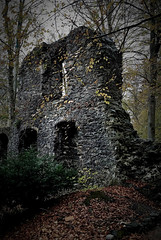 Altzella Monastery Park / Klosterpark Altzella (Caledoniafan (Astrid)) Tags: altzella altzellamonasterypark klosterparkaltzella sachsen saxony germany deutschland kloster monastery ruin ruine ruined ruinös