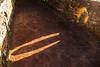 Bridge Shadow (Briantc) Tags: scotland perthshire bruar forest shadow bridge stone
