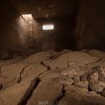 Saharan Horned Viper (Cerastes cerastes) stranded in an underground water chamber - Assa, Morocco thumbnail