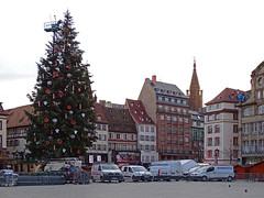 Strasbourg, capitale de Noël (Edouard55) Tags: strasbourg capitaledenoël grandsapin