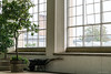 Květná zahrada, 1665–1675, entrance area with glasshouses 1840-1845 (Anita Pravits) Tags: blumengarten czechrepublic garten gewächshaus glashaus kremsier kroměříž květnázahrada mähren palmenhaus südmähren tschechien tschechischerepublik garden glasshouse greenhouse českárepublika