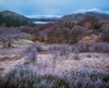 The Land Wears its Winter Coat (john.gilmore57) Tags: nikon d7200 scottish landscape trossachs