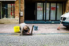Damn Drains! (gwpics) Tags: man drainage belgium problem streetphotography drains belgian ypres people everydaylife leica lifestyle male men person socialcomment socialdocumentary society streetphotos streetpics streetlife