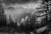 1920p 72dpi-2763-2 (R W Gibbens Photo) Tags: chamonix montenvers aiguillesrouges autumn larch tree alps alpine mist cloud trees france savoie