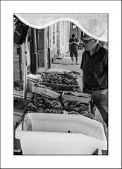 La belle huitre (Napafloma-Photographe) Tags: 2017 architecturebatimentsmonuments bandw bw bretagne bâtiments catégorieprojet géographie métiersetpersonnages personnes techniquephoto vacances blackandwhite magasin marché monochrome napaflomaphotographe noiretblanc noiretblancfrance photoderue photographe poissonnerie province streetphoto streetphotography lannion côtedamor france fr