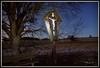Maria und Jesus (Renata1109) Tags: maria jesus kreuz nachtaufnahme bayern linde tree baum bank