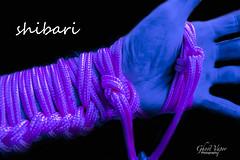 Shibari (TheGhostVaporVision) Tags: shibari kinbakybi ties bondage knot ringbolts rope work ropework hand hitch ladder japanese art artist photographer ghostvaporphotography pink kinky domination sexy bond