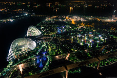 Gardens by the Bay (pablocba) Tags: gardens bay sentosa singapur singapour cityscape supertrees supertree groove grove sony ilce6000 emount lenses night marina sands sky park