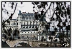 Château d'Amboise / Amboise castle (christian_lemale) Tags: amboise château castle touraine france nikon d7100 automne autumn loire river fleuve