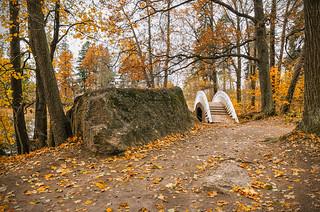 A Chinese bridge in the Monrepos park in Vyborg.
