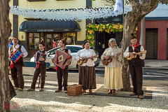 Madeira Traditional Musicians (Redhood Photography) Tags: traditional dance tanzen tanz music musik jump spring sprung madeira portugal wine wein festival fest lifestyle tradition