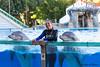 Three smiling faces (JOAO DE BARROS) Tags: joão barros animal dolphin people