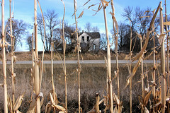 Children Beyond The Corn Are Waiting to come home~ (Ackermans Finest Photography~ ( see the Sets+) Tags: children beyond corn field house rotting abandoned scary haunted south dakota