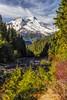 Mount Baker from Baker Lake Road 2 (i8seattle) Tags: mount baker