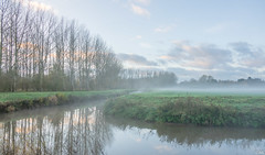 Misty Morning (Martine Lambrechts) Tags: misty morning landscape nature reflection tree
