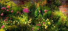 The Walled Garden (Just Click 2017) Tags: