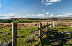 Fence & Stile on Dartmoor - Nik-1445-2 (Jean Fry) Tags: dartmoor dartmoornationalpark devon moorland ringmoordown uk westcountry fences stiles tors englanduk