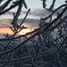 Norway's sunrise
