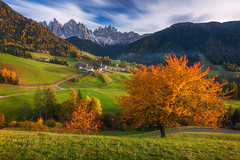 Autumn Dream (albert dros) Tags: valdifunes trees vilnoss dolomites falls church albertdros mountains italy greens autumn travel orange longexposure