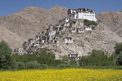 Chemre Monastery (bag_lady) Tags: chemremonastery leh ladakh festival india gompa lamatagsangraschen kingsenggenamgyal padmasambhava buddhist buddhism drugpa