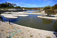 Cranbourne RBG Nov 2017 060 (Graeme Butler) Tags: water landscape history gardens australianplants architecture victoria australia