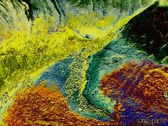 the flow (Sonja Parfitt) Tags: beach sand processed rocks seaweed