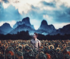 Morning in the field (Alexander Shark) Tags: cold sunflowers flowers explore darkness dark light countryside morning sun atmosphere air clouds sky field portrait boy mountains