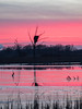 Eagles Nest, Sunsest (@Michael) Tags: em1ii fall gear minnesota olympus places sherburnenationalwildliferefuge sunset winter