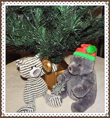 Hey Guys It's Too Soon (marilyntunaitis) Tags: toosoontodecoratetree zag stuffedanimals teddybears christmastree plush