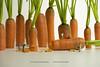 Erntezeit (Nico Fiebig Freizeitfoto.de) Tags: möhre möhren karotte karotten miniatur mini suppengrün suppe grün orange gemüse miniaturwelt miniaturwelten