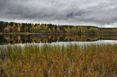 Autumn (Stefano Rugolo) Tags: stefanorugolo pentax k5 smcpentaxda1855mmf3556alwr autumn layers sky wood lake water reeds hälsingland sweden landscape tree reflection