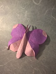 Butterfly (D.A. Tu) (Helyades) Tags: origami butterfly papillon ioio ioio2017 carré square papier paper pli pliage fold soie tissue bicolor animal