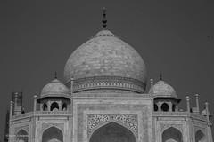 Taj Mahal (norm.edwards) Tags: tajmahal taj mahal india agra beautiful architecture wonderful wonder light shadows sunlight amazing world wonderoftheworld stunning creative travels travelling art romantic fantastic people culture