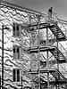 fire escape (heinzkren) Tags: notausgang feuertreppe exit ausgang fassade facade building treppe stairs stiege fenster windows mann man schwarzweis blackandwhite bw monochrome panasonic lumix urban candid austria street streetphotography gebäude reflektion reflection sheetmetal tin blech wellen waves architektur architecture