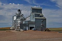 Whitetail, Montana Old Wood Grain Elevator. (Wheatking2011) Tags: whitetail montana old wood grain elevator metal siding end soo line railroad branch