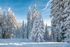 Hohe Tauern National Park