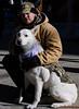 ServiceDog&ArmyVet(NYC) (bigbuddy1988) Tags: people portrait photography d7000 nikon art new nyc usa manhattan city pet dog army newyork veteransday military white