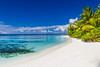 Parasol (icemanphotos) Tags: parasol solitude jungle coral snorkeling paradise island