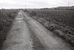 17 Field near Kellingley Colliery, 23 Oct 2017 (I ♥ Minox) Tags: film 2017 om1 om1n olympus olympusom1 olympusom1n hp5 ilfordhp5plus ilford 400asa yorkshire blackandwhite monochrome om1033 kellingley kellingleycolliery knottingley mining mine colliery westyorkshire