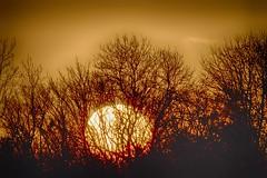 sunrise (colskiguitar) Tags: sunrise donmouth balgownie naturereserve
