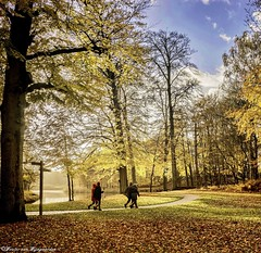 Autumn (Wouter van Wijngaarden) Tags: woutervanwijngaarden baarn groeneveld herfst autumn wijnberg dutch nederland holland thenetherlands sony park people wood sky grass forest rain kleuren colors