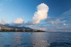 IMG_5928.jpg (Sdsurfinmatt) Tags: lahaina hawaii unitedstates us