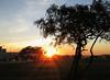 Amanhecer em Brasília (Luiz Carlos Targino Dantas) Tags: brasília distritofederal df brasil amanhecer nascerdosol sunrise street canon