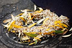 20171204-04-Christmas wreath formed by the emergent pattern of leaves washed down a drain (Roger T Wong) Tags: 2017 australia christmas hobart iv metabones rogertwong sigma50macro sigma50mmf28exdgmacro smartadapter sonya7ii sonyalpha7ii sonyilce7m2 tasmania drain emergence emergent flowers leaves nature pattern physics wreath
