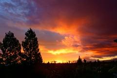 Morning Glow (Rice Bear) Tags: alpha california gmaster sel2470gm sancarlos sony sonya7r2 clouds cloudy silhouette sunrise trees