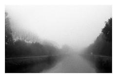 Dans le brouillard (Cécile75 - Film only) Tags: grain film analogue analogique argentique bw blackwhite blackandwhite bwfp river bretagne tree nb noiretblanc noirblanc nature nuages arbre brume canal nantes à brest breton canalnantesàbrest