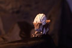 Cottontop Tamarin by  Kunsulu Jilkishiyeva (Nikita Vasiliev) Tags: origami origamiart paper paperart tamarin monkey kunsulujilkishiyeva