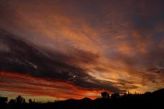 Sunset 10 31 17 #23 (Az Skies Photography) Tags: sun set sunset dusk twilight nightfall cloud clouds sky skyline skyscape arizona arizonasky arizonaskyline arizonaskyscape arizonasunset red orange yellow gold golden salmon black canon eos 80d canoneos80d eos80d canon80d october 2017 31 october312017 103117 10312017 rio rico riorico rioricoaz