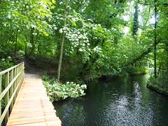 Bridge - Ekenstein (Henk van der Eijk) Tags: ekenstein lucaspietersroodbaard willemalberdavanekenstein tjamsweer groningen